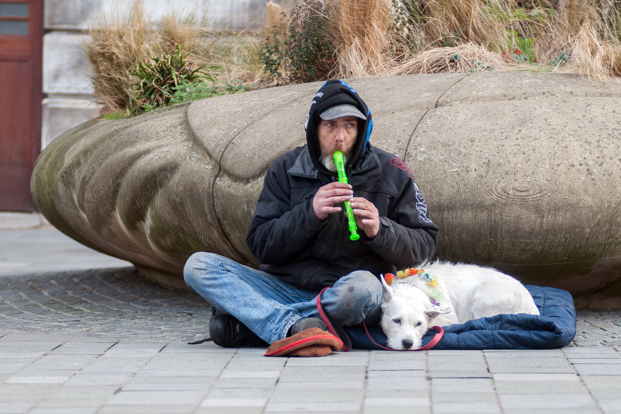 A man sitting on the ground playing a recorder-like instrument, with a dog curled up beside him.