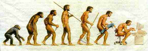 Evolution picture showing ape through to man (with the last man sat hunched over a computer)