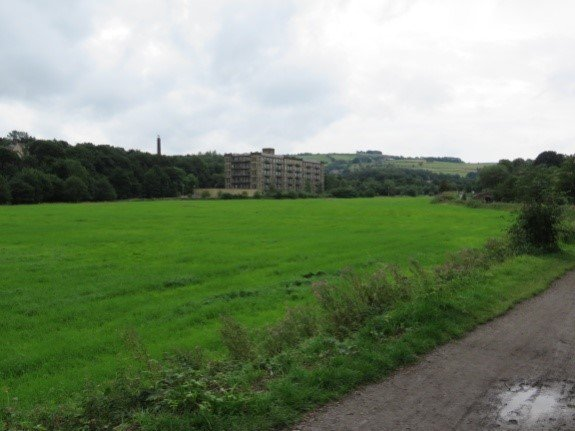 View to Lowestwood Mill.