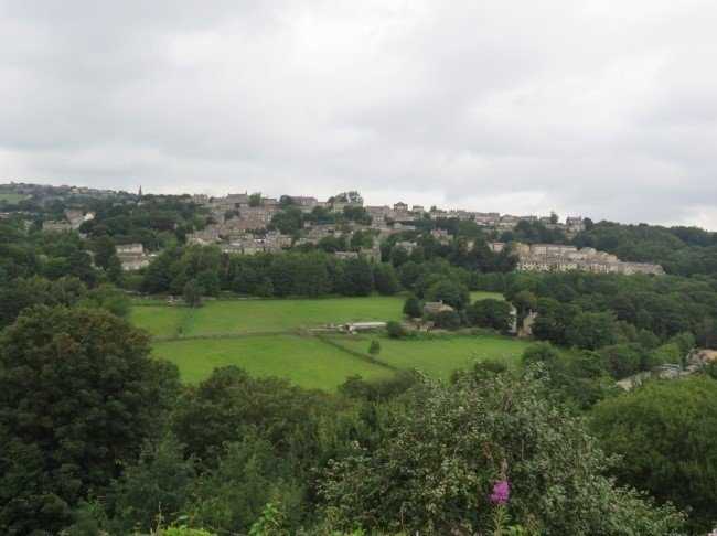 View across Colne Valley from 2020, in colour, showing lots of trees.