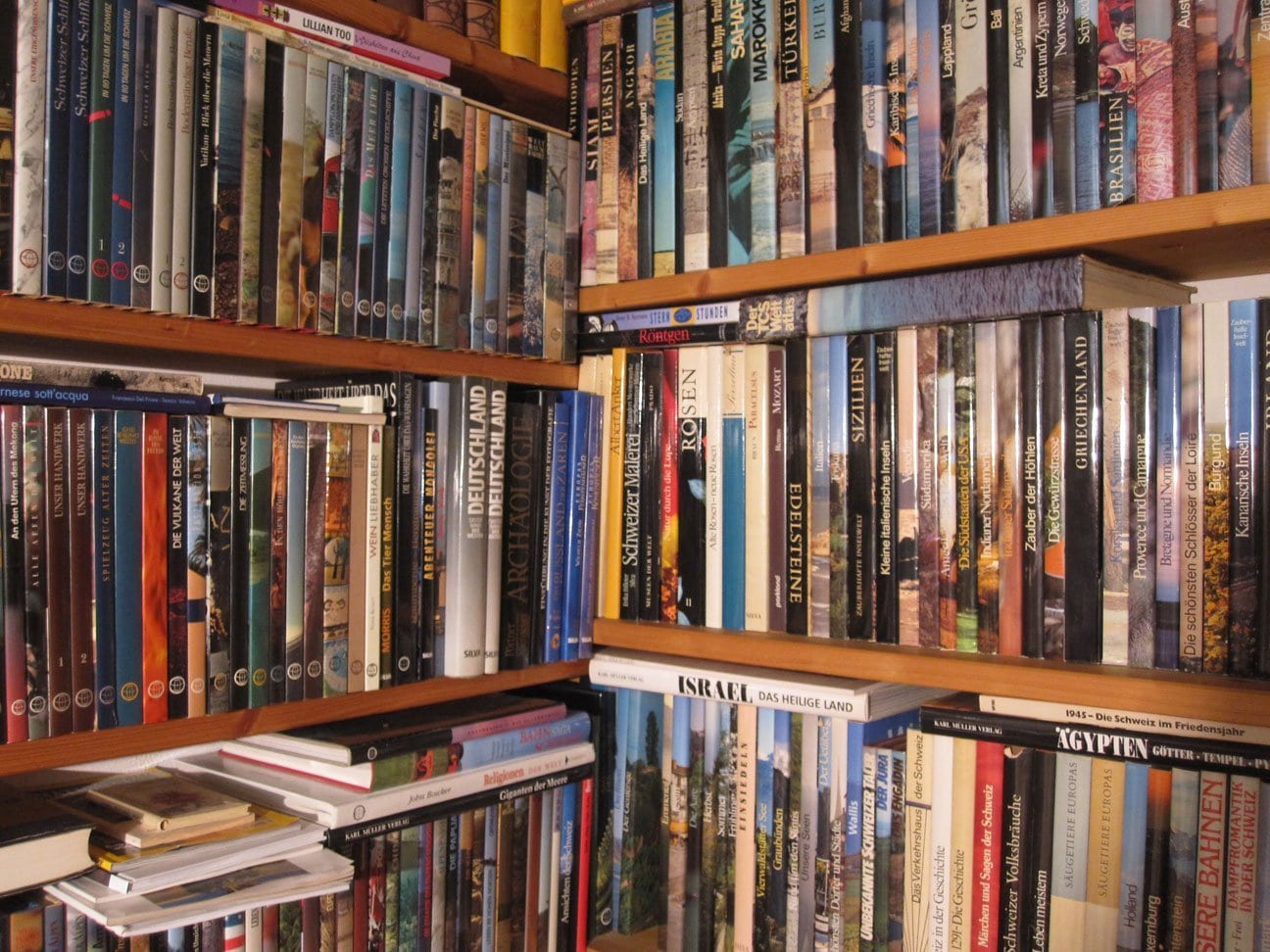 Bookshelves with books of the world