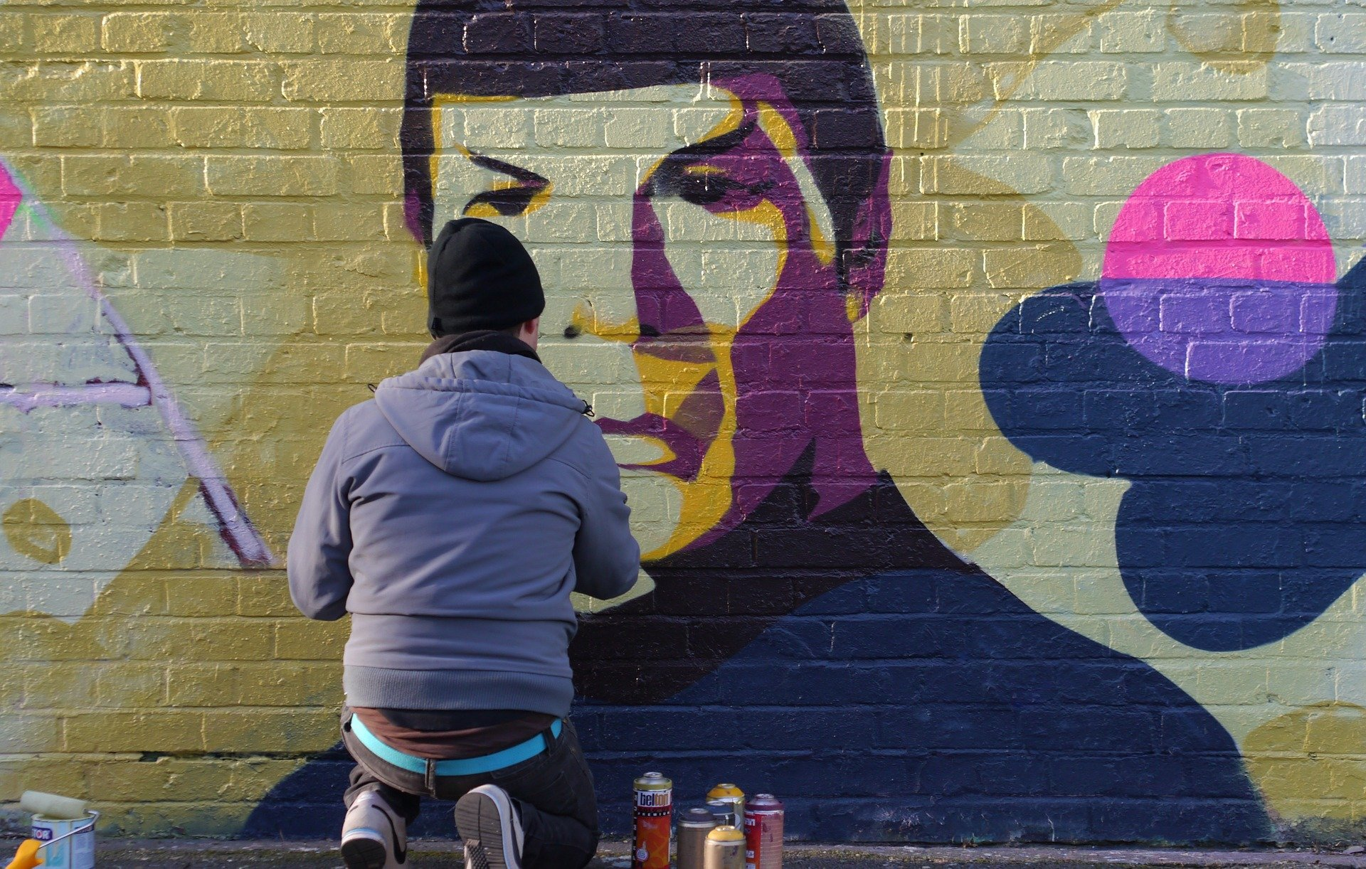 Image of wall art showing Mr Spock from Star Trek