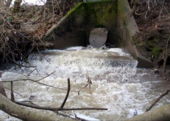 Wetherby River Sewage