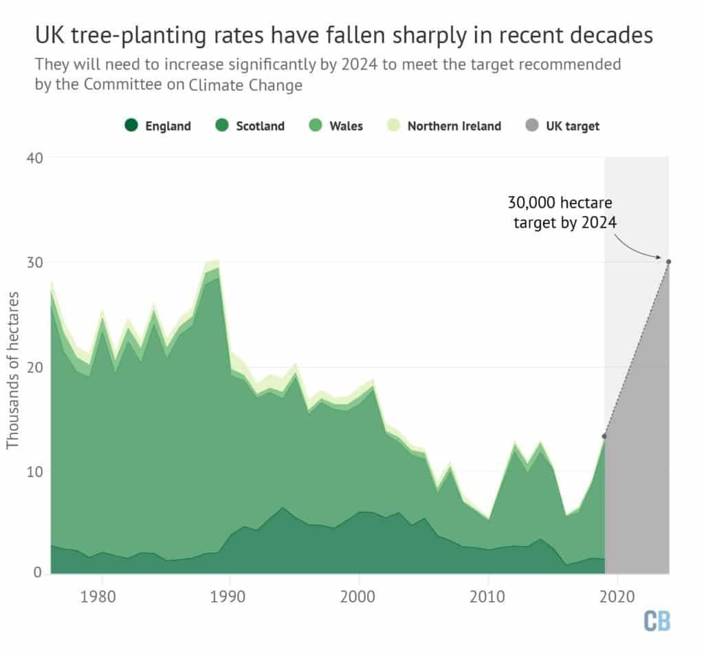 tree planting rates